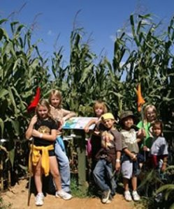 Tweit's Corn Maze Adventure in Minnesota