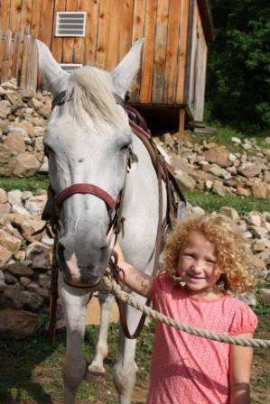 French Broad River Ranch Horse Encounter
