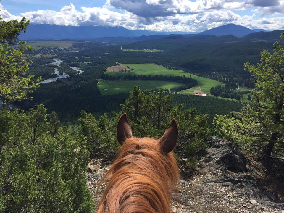 Three Bear Ranch Trail Ride British Columbia