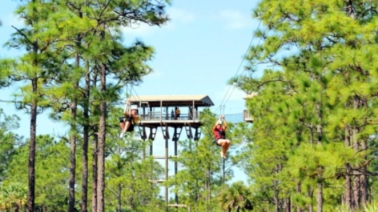 Forever Florida Duel Zipline Family Adventure
