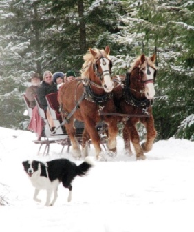 Sleigh Ride at Western Pleasure Guest Ranch in Idaho.