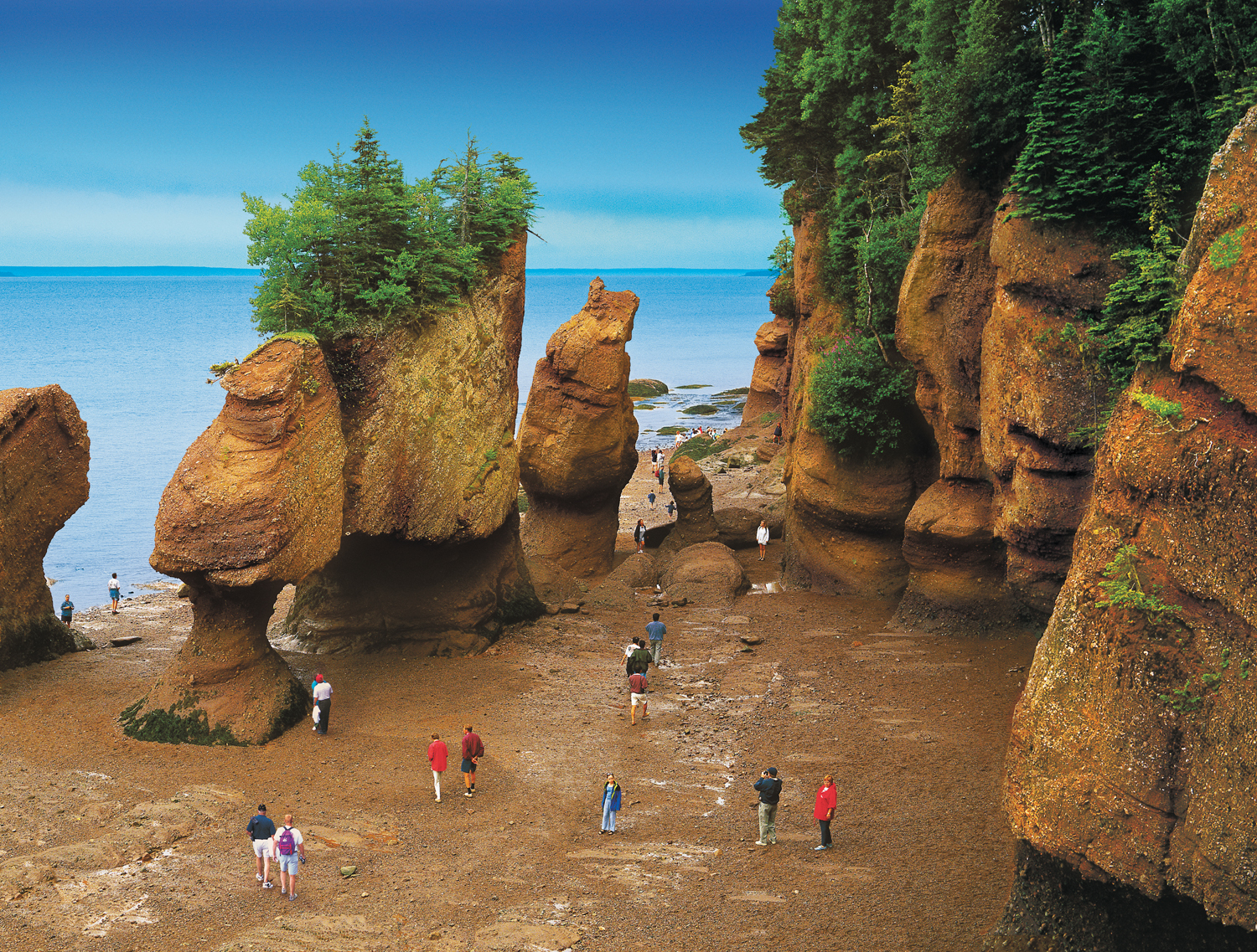 New Brunswick Hopewell Rocks at Low Tide