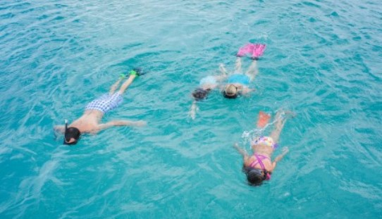 Snorkeling in Aruba with Kids