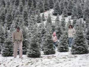North Carolina Winter Family Vacation Fun
