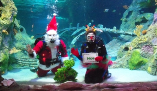 SeaLife CenterSanta in Grapevine Texas