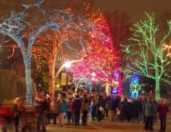 Lincoln Park ZooLights at Christmas in Chicago