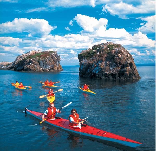Bay Of Fundy New Brunswick Family Vacations