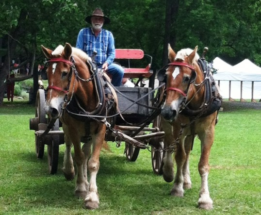 Homestead Hollow Alabama Wagon Ride