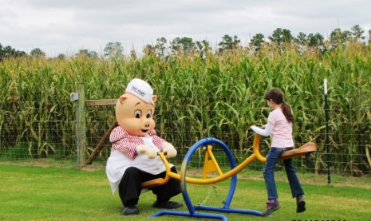 Hubb's Farm North Carolina Corn Maze and Teeter Totter.