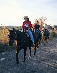 Southern West Virginia Horseback Riding