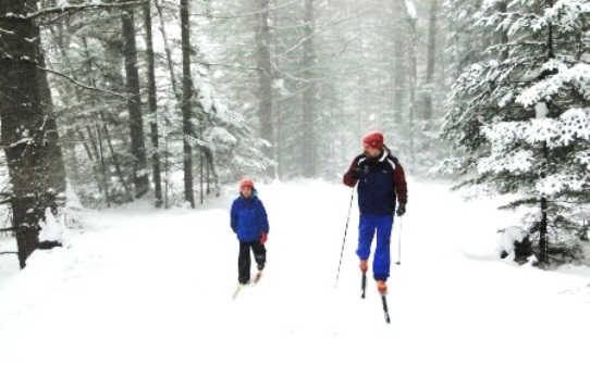 Lapland Lake Resort Cross Country Trail