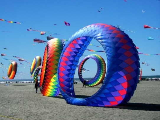 Long Beach Washington Kites On The