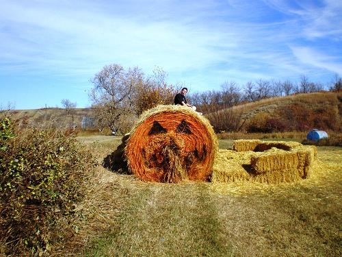 Canada Heartland Provinces Best Corn Mazes And Fall