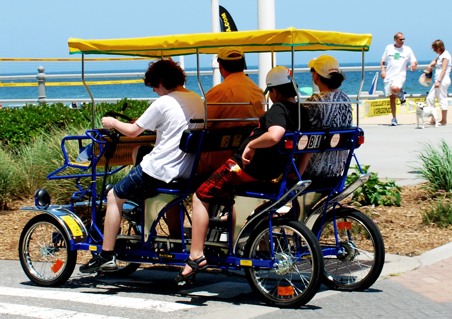Bikes Virginia Beach Surrey Rental Related Keywords