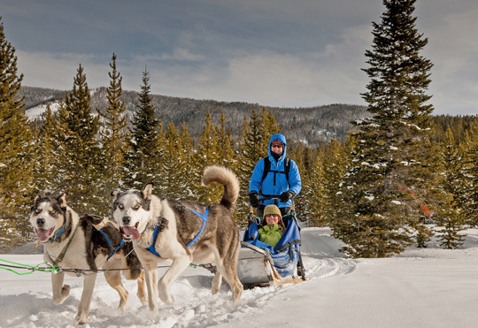 Spirit of The North Dog Sled Adventures