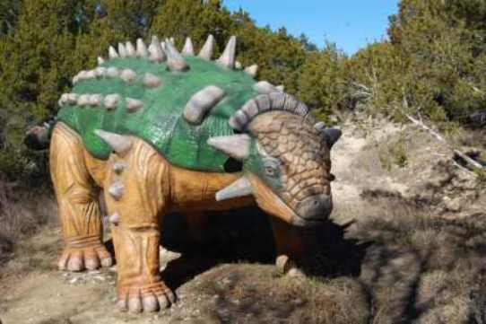 Glen Rose World Anklyosaurs sunning herself