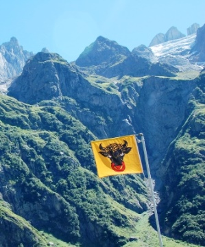 Swiss Alps  Canton Flag Marks the Way