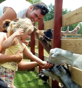 Fort rickey Petting Zoo, Oneida County New York