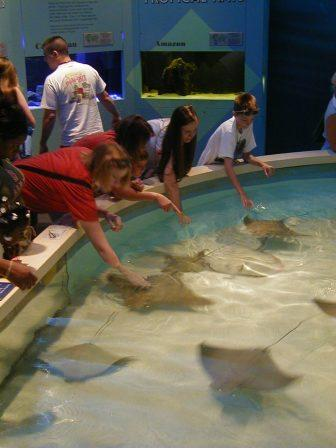 Virginia Beach Marine Science Center Family Travel Files