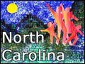 North Carolina Family Vacation Ideas