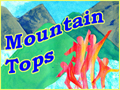 Mountain Top Summer Family Vacations