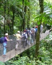 Canopy Walk Costa Rica