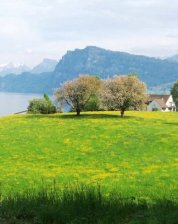 Lake Lucern, Lucern Switzerland